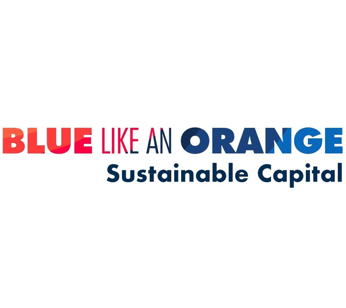 BLUE LIKE AN ORANGE SUSTAINABLE CAPITAL