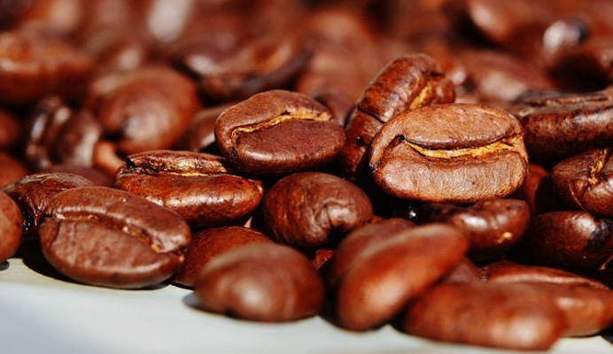 The Swiss agribusiness company SYNGENTA launches Nucoffee: an initiative that connects growers, cooperatives and roasters in a transparent business partnership.