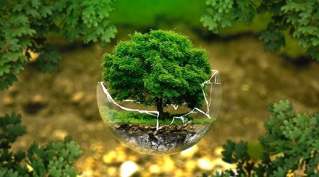 Politique environnementale et lancement d'une ligne de coton équitable chez HACOT COLOMBIER