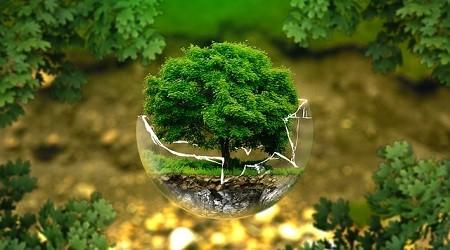 Le GROUPE BRUNEL, attentif à l'impact écologique de ses produits