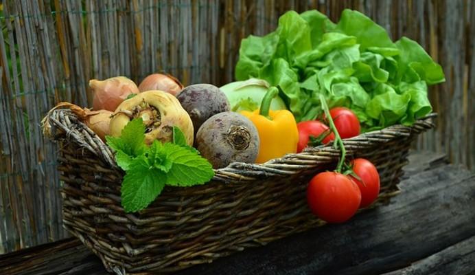 « LES PANIERS DE ANNE » : un circuit court de la ferme à l'assiette